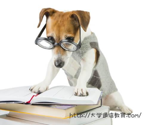 丸合について調べる大学教授